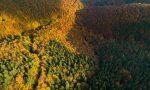 Foliage d'autunno all'Oasi Zegna: spettacolo unico  tra colori e paesaggi