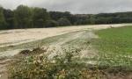 Coldiretti Vercelli – Biella, danni a colture, strutture e magazzini