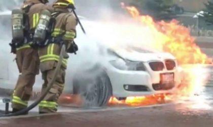 Bmw prende fuoco mentre percorre la SP 142 a Cossato