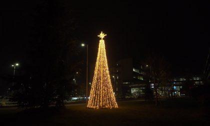 Ospedale, albero di Natale simbolo di vicinanza agli operatori sanitari-FOTOGALLERY
