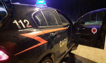 Scontro frontale a Valle Mosso: illesi i due conducenti