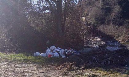 Abbandona 7 sacchi della pattumiera tra gli alberi di Chiavazza