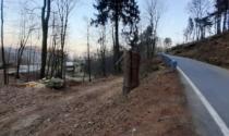 """Legambiente Biella: """"Impressionanti tagli di alberi a Croceserra"""""""