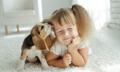 In regalo con Eco di Biella un magazine tutto dedicato ai nostri amici animali