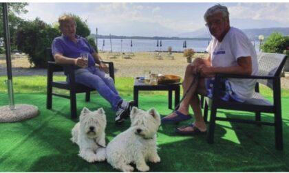 Una spiaggia per cani sul lungolago