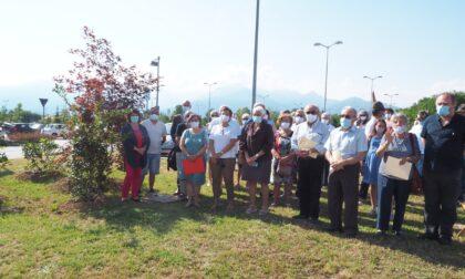 Da Ail 4 alberi per l'area verde dell'ospedale. Ecco le foto della cerimonia di piantumazione