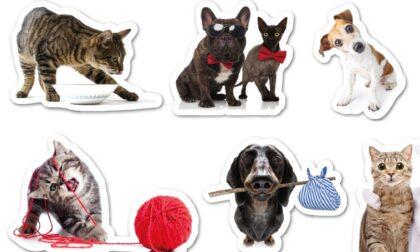 Originali stickers in regalo con Eco di Biella