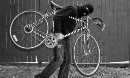 Ritrova in vendita a 3mila euro su internet la sua bici rubata pochi giorni prima