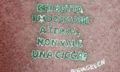 "Candelo ripulita dagli scatenati ""bogiagreen"""