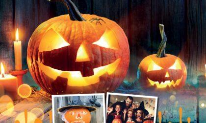 Halloween sta arrivando: decora una zucca e mandaci la foto. Eco di Biella la pubblicherà